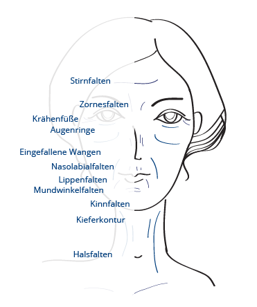 Illustration Faltenarten